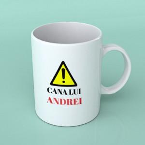 CANA LUI ANDREI