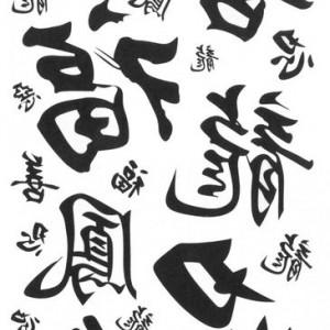Tatuaj Temporar Caractere Chinezesti