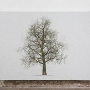 Finger Tree Hermes