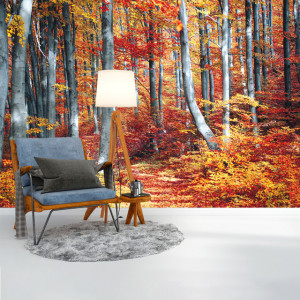 Foto tapet Simply autumn