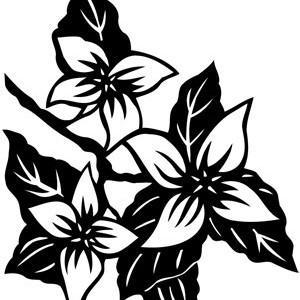 Sticker De Perete Orhidee 01