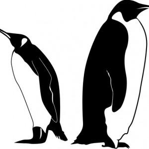Sticker De Perete Pinguini