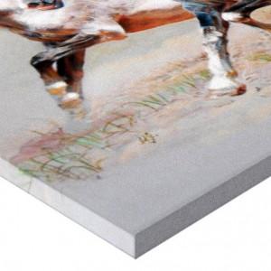 Tablou canvas efect painting - cai 02