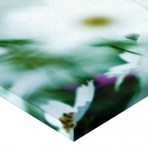 Tablou canvas - flori 01