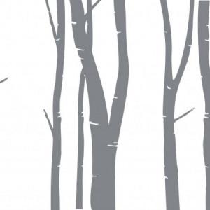 Trunchiuri de copac