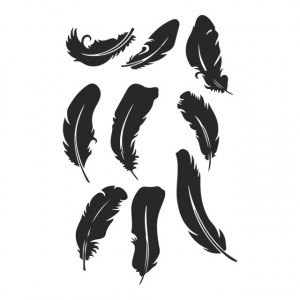 Feather Bird