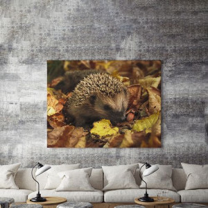Tablou Canvas Arici in Frunze