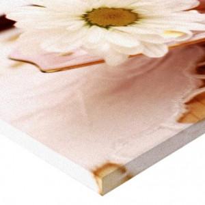 Tablou Canvas - Floare 01