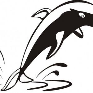 Sticker De Perete Delfin