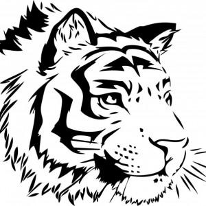 Sticker De Perete Tigru 05