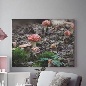 Tablou Canvas Ciuperci