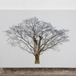 Tablou Canvas Finger Tree Hestia