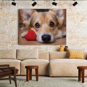 Tablou Canvas Lovely Corgi