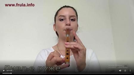 """Naučite da svirate """"DIVLJE RUŽE"""" - VIDEO LEKCIJA za frulu"""