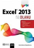 Excel 2013 na dlanu - Steve Johnson