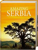 Amazing Serbia - Dragan Bosnić