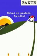 Čekaj do proleća, Bandini - Džon Fante