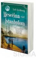 Mesečina nad Istanbulom - Sofi Goldberg