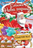 Stiže Nova godina - Broš slikovnica - Dragana Džajević