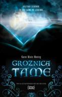 Groznica tame - Karen Mari Moning