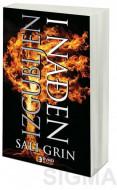 Izgubljen i nađen - Sali Grin