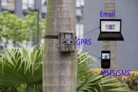 Slika FOTKLOPKA - bezbednosna kamera za nadzor