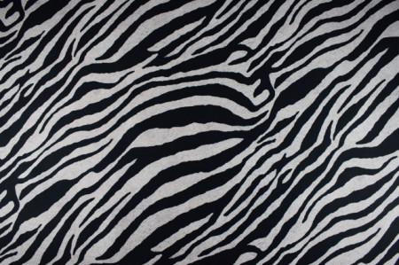 mebl štof zebra