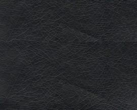 Eko koža Meyris 901