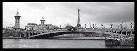 Slika Ajfelov toranj i most Aleksandar, uramljena slika