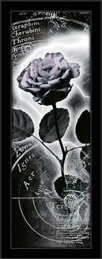 Slika Merkur ruža, uramljena slika
