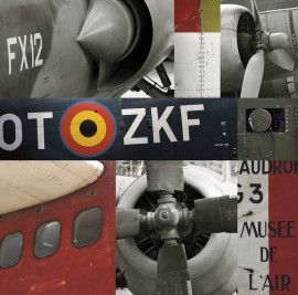 Stari avioni 2, uramljena slika