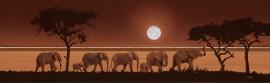 Slonovi i sunce, uramljena slika