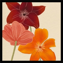 Šareni cvetovi, uramljena slika