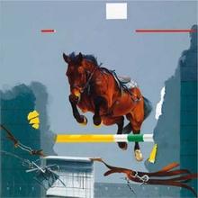 Konj na takmicenju