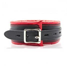 Slika Povodac | Collar and leash red