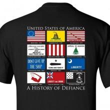 Футболка History of Defiance Black