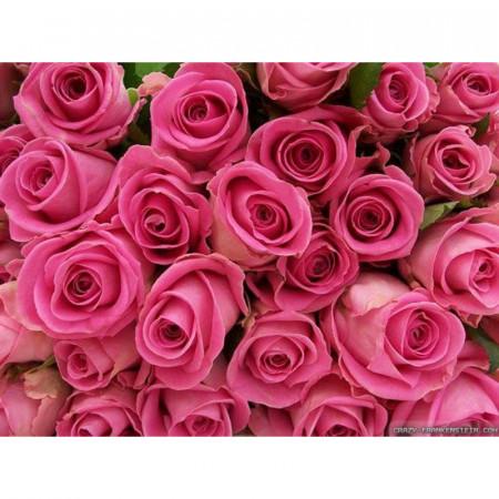 """Ulei de parfum """"Garden rose"""" 10 ml"""