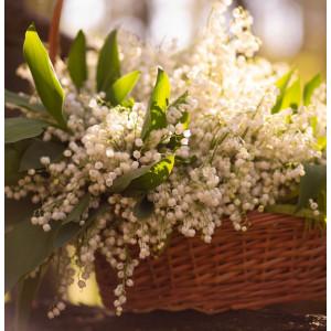 Parfumant cosmetic Lacramioare