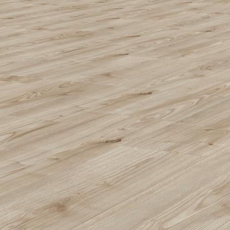 ticino oak  1