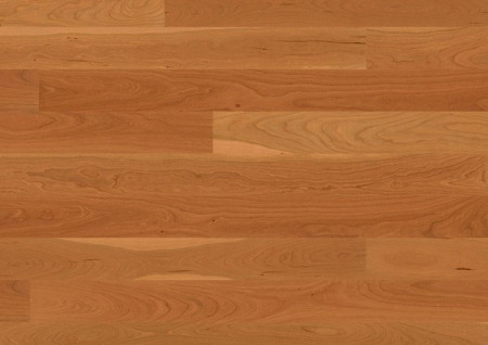 Parchet Plank 138/14mm Andante Cherry American Natur
