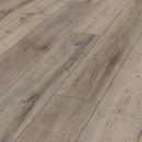Laminat Fashion Oak Elegant 8 mm