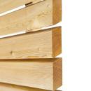 Profil fatada ventilata lemn Larice Siberian detaliu