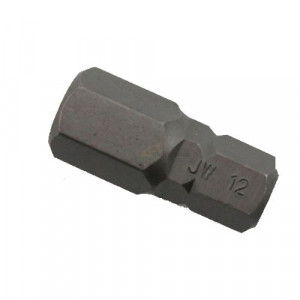 Bit 10mm Imbusz 12