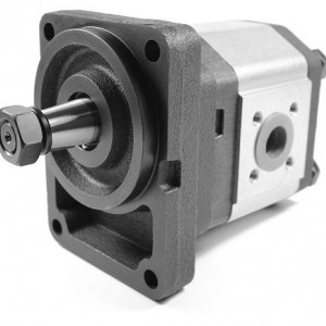 Pompa hidraulica cu roti dintate Caproni 20C11X329N