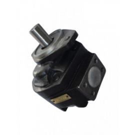 Pompa hidraulica JCB 919/27000 919/74200 P2AP2207G2