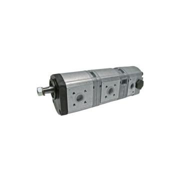 Pompa hidraulica cu roti dintate Fendt G117941010011