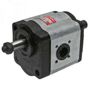 Pompa hidraulica cu roti dintate Fendt G238401100012