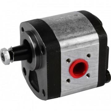 Pompa hidraulica cu roti dintate Fendt G231941010010