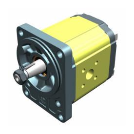 Pompa hidraulica cu roti dintate Vivolo X2P4342FSRA