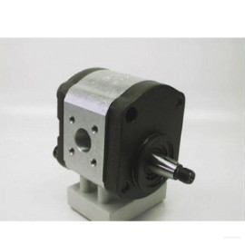 Pompa hidraulica cu roti dintate Deutz 02308341
